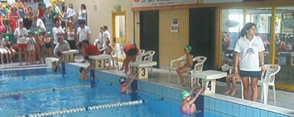 I dipendenti della piscina di barzan sei mesi di proroga per la gestione merate e casatese - Piscina di barzano ...