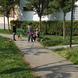 Calolzio, Controlli antidroga al parco  Denunciato un minorenne con hascisc