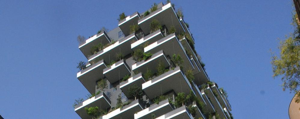 Il nostro Bosco verticale   è il più bello del mondo