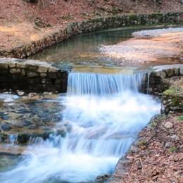 Passeggiate poetiche  Ad Albese nel segno dell'acqua