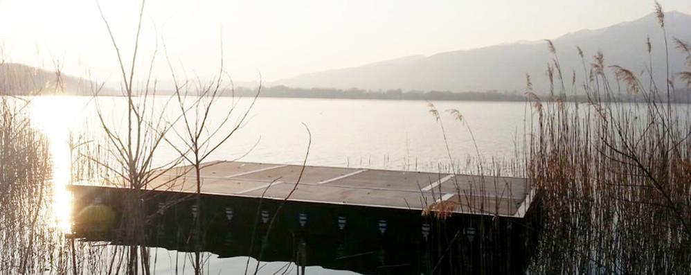 Bosisio, un cadavere nel lago   Sarebbe quello di uno scomparso