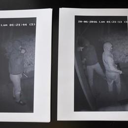 Cantù, ladri all'agriturismo  Ecco le loro fotografie
