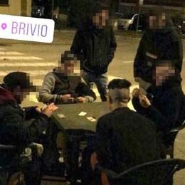 I vandali pubblicano foto e video sul web  Airoldi: «Ora pentitevi. O vi denuncio»