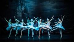 """""""Il lago dei cigni"""" e delle stelle   A Sondrio danzano  le Russian stars"""