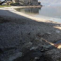 Siccità, la riserva d'acqua scende  «Misurate i consumi fino alle piogge»
