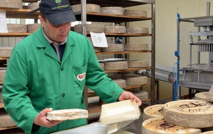 Un lungo festival sulla via del formaggio  La Valle mette in mostra i suoi sapori