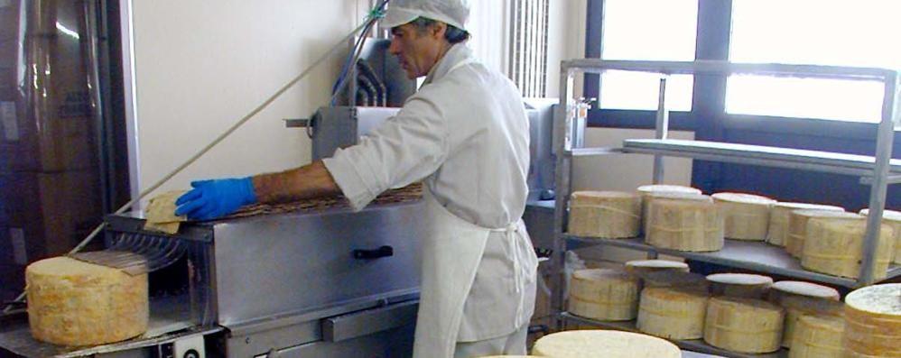 Nascono dieci percorsi golosi  nella Valle dei formaggi