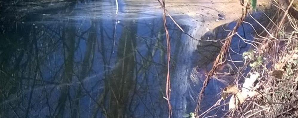 Bosisio, canale inquinato da idrocarburi  Un mese per la bonifica, ditta multata
