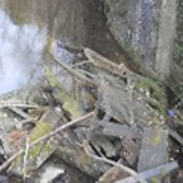 Recuperare il Naviglio di Leonardo  È un patrimonio in abbandono