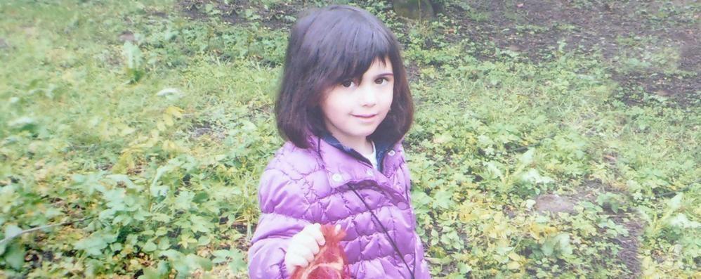 Inverigo piange Arianna  È morta a 4 anni di età