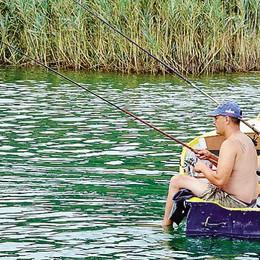 Rogeno balneabile, ma Bosisio no  Il lago di Pusiano non per tutti