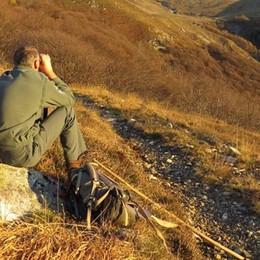 Val Cavargna, ecco le tracce del lupo