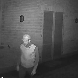 Ecco chi ruba nelle nostre case  In un  video  i ladri di Cantù
