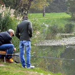 Il lago di Annone chiede ancora aiuto  Parametri distanti da quelli europei