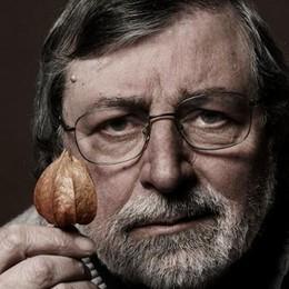 Che notti al Premio Tenco  Omaggio a Francesco Guccini