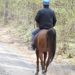 Cade da cavallo a Lurago  Amazzone in ospedale