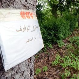 Parlo arabo? Qui non si posteggia A Costa il cartello spiega tutto