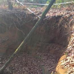 Torrente Molgorana a rischio  Interventi contro l'erosione