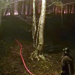 In fiamme il bosco sopra Barzio  Rogo domato dopo ore di lavoro