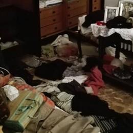 I ladri sfruttano le porticine dei cani  Albese, devastata casa del fotografo