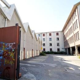 """Tre progetti per l'area """"ex Segalini""""  Casa di riposo, residenze o servizi"""