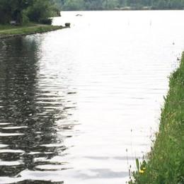 La lenta agonia   del lago di Sartirana