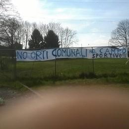 Oltre 600 firme contro gli orti  Referendum a Monticello