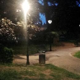 Parco di Erba illuminato  «Aperture lunghe»