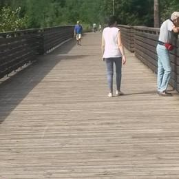 Calolziocorte. «Sul ponte   le telecamere anti-vandali»