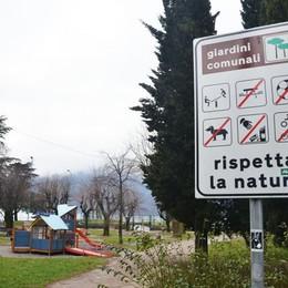 La promessa di Natale del Comune  «Il parco di piazza Gera tornerà a fiorire»