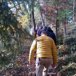 Canzo, in 63mila sul sentiero  E' il più frequentato dei boschi