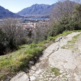 """Lecco, c'è una strada nel bosco  Il progetto """"privato"""" per Campo de Boi"""