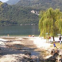 Scatta la grande pulizia delle spiagge  Legambiente a caccia di rifiuti pericolosi