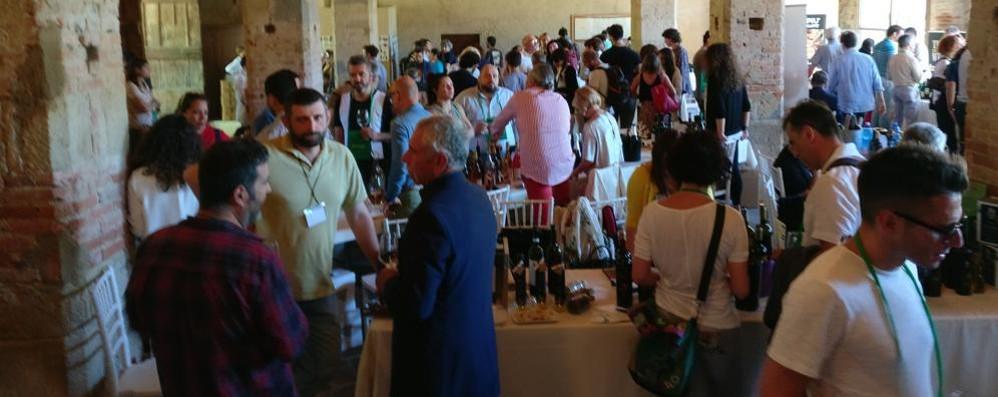Il dio Bacco conquista Olgiate  Coda per assaggiare i 400 vini