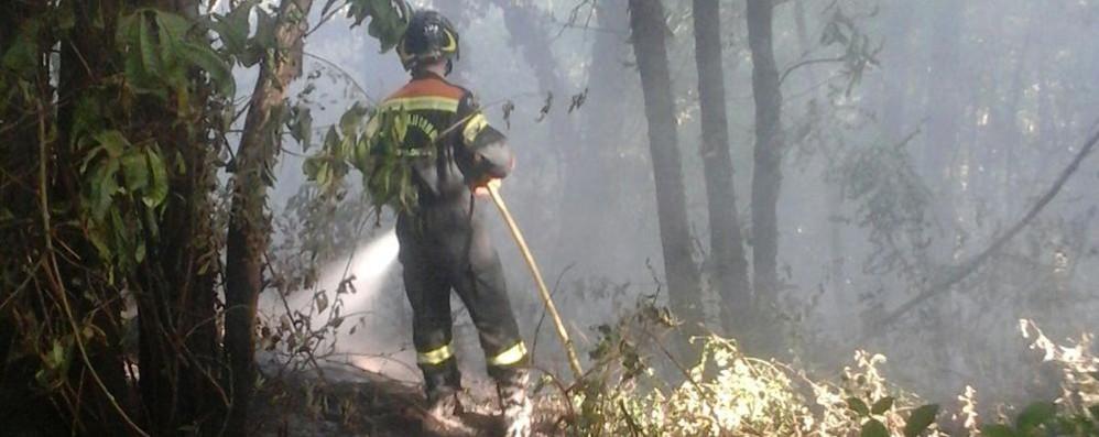 Incendio doloso sopra Piona  Distrutti due ettari di bosco