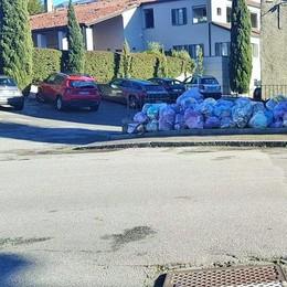 I sacchi viola lasciati in strada da Silea?  «Alcuni potevano essere raccolti»