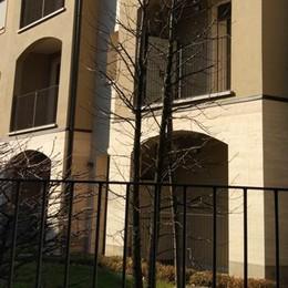 """Cassago, progetto """"Una casa per tutti""""  In arrivo quattro appartamenti"""
