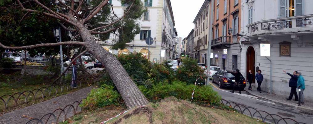 Lecco, il giorno dopo la tempesta  Gru su un palazzo e danni ovunque