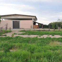 Ucciso dalla 'ndrangheta a Bregnano  In carcere i tre condannati dopo 9 anni