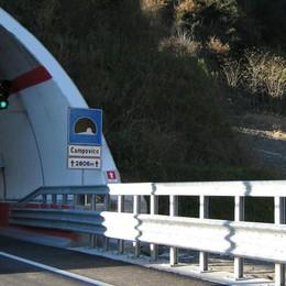 Passaggio dei cervi sulla nuova statale 38  «Chiediamo in Provincia altre barriere»