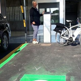 Incentivi per i veicoli elettrici  Ma qui se ne vendono 12 all'anno