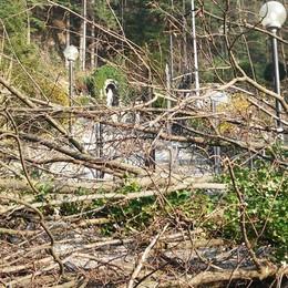 «Quegli alberi sono pericolosi»  La storica Via Crucis vietata ai fedeli