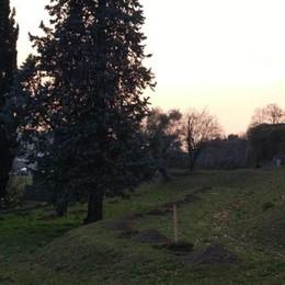 Monticello, il frutteto torna in vita  Studenti al lavoro nel parco