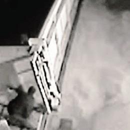 Facevano sparire camion e trattori  Sgominata la banda, undici arresti