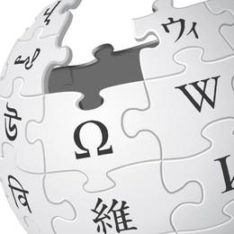 Wikipedia Italia si blocca  Protesta contro il nuovo copyright