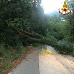 Tempesta sul Lecchese  Disagi e danni sul lago