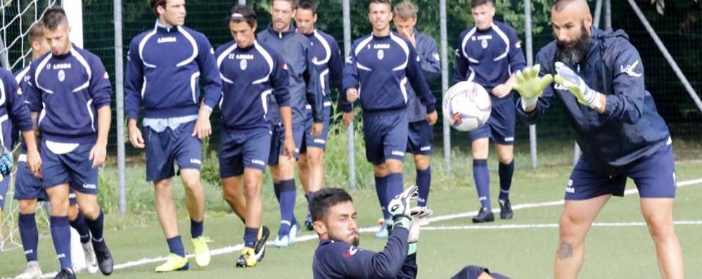 Calcio Lecco, che beffa  Via al campionato il 16 settembre