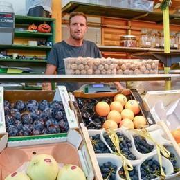 Mercatino per la Hollywood in centro  In beneficenza i 40 quintali di frutta