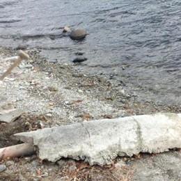 L'ultimatum del sindaco è scaduto  Due scarichi a lago sono stati murati