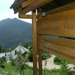 La Regione stringe sugli agriturismi  «Sì alla genuinità, ma senza eccessi»